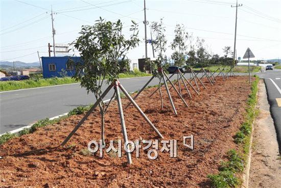 영암군 신북면(면장 신영철)은 주민들의 봉사와 기증한 나무로 나주시 왕곡면 경계지역인 원학동 마을 입구에 화단을 조성했다.