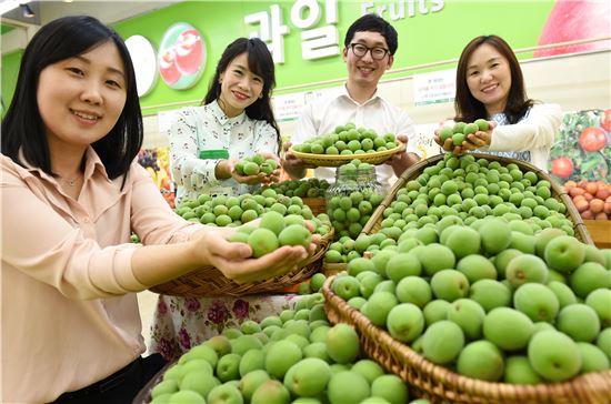 23일 서울 서초구 농협하나로클럽 양재점에서 모델들이 올해 첫 출하된 매실을 선보이고 있다. 농협유통은 매실의 본격 출하가 시작되는 오는 26일부터 시세대비 30% 저렴하게 매실을 선보일 예정이다.