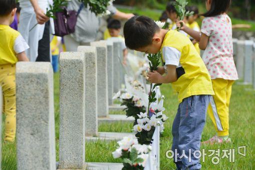 [포토]국화 한 송이