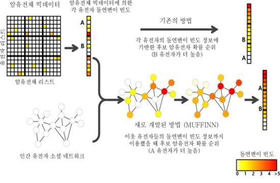 ▲유전자 소셜 네트워크를 이용한 암유전체 빅데이터 분석방법.[사진제공=미래부]