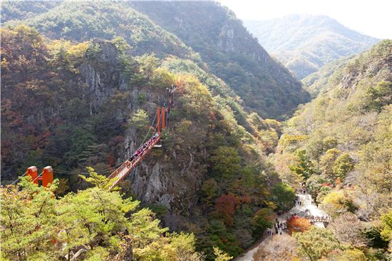우리나라 최초의 군립공원인 강천산. 순창을 대표하는 힐링 여행지다.