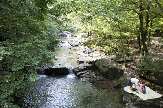 산은 높지 않으나 산세가 수려하고 계곡을 따라 맑은 물이 흐른다.