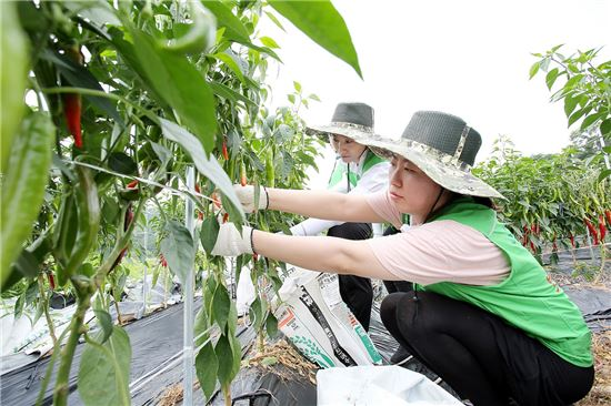 홈플러스, 임직원 100여명 중산마을 방문…현장경영 강화