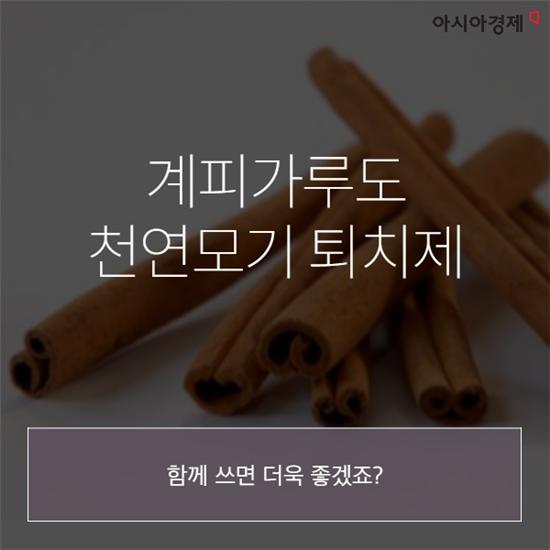 [카드뉴스]'모기해결사' 토마토의 비밀