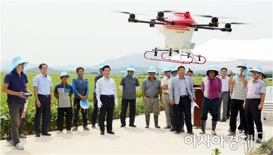 영암군이 드론(멀티콥터)을 이용해 벼 병해충 방제에 나섰다.