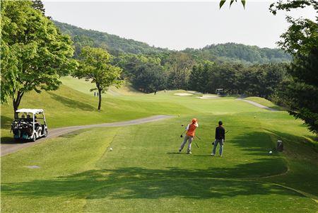 신라골프장을 비롯해 137개 골프장이 하계에도 정상 영업한다.