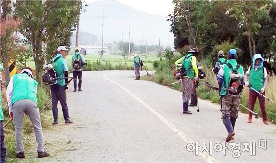 장흥군 기관단체 도로변 풀베기 '구슬땀'