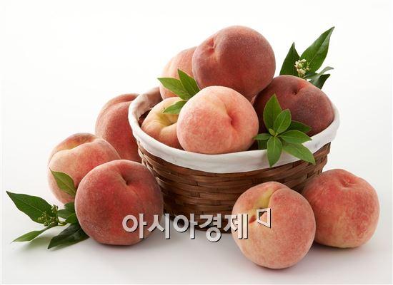 올 여름 과일 시장 복숭아가 '인기'…출하량 늘어 가격 '뚝'