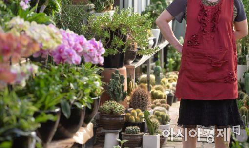 [포토]김영란법과 꽃시장