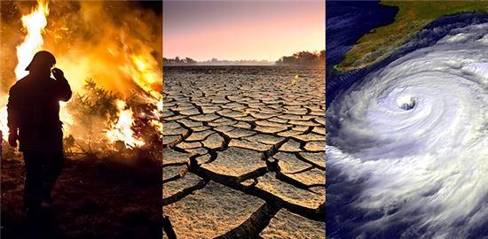 ▲기후변화는 생태계에 큰 영향을 미친다.[사진제공=NASA]