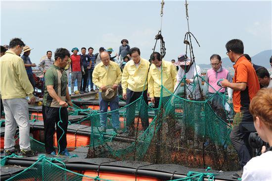 김영석 해양수산부 장관(사진 가운데)이 23일 전남 완도 전복 폐사현장을 둘러보고 있다.