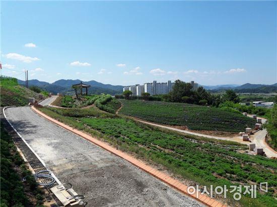 전남 화순군이 주민들에게 쾌적한 여가 공간을 제공하기 위해 도심 속 공원인 남산공원을 녹색쉼터로 새 단장키로 했다.