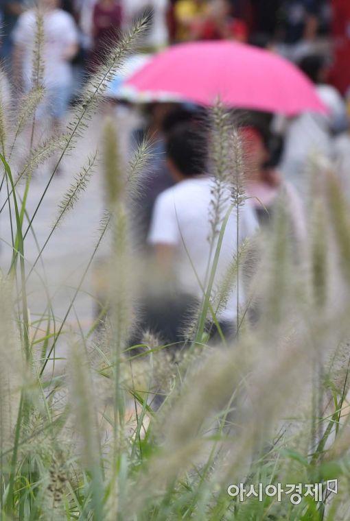 [포토]오락가락 서울 날씨