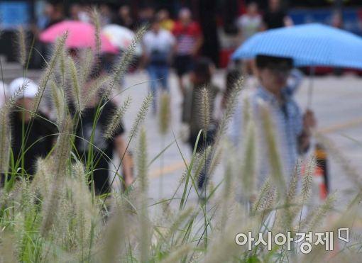 [포토]가을과 함께 온 비