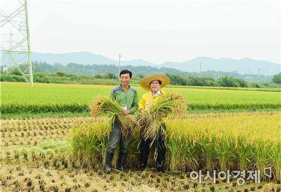 6일 장성군은 남면 분향리에서 쌀전업농을 비롯한 조생종 벼 재배 농업인 80여명이 참석한 가운데 수출용으로 재배된 조생종 벼 수확 연시회를 열고 해외로 수출되는 장성쌀을 자축하는 자리를 가졌다고 말했다. 사진=장성군
