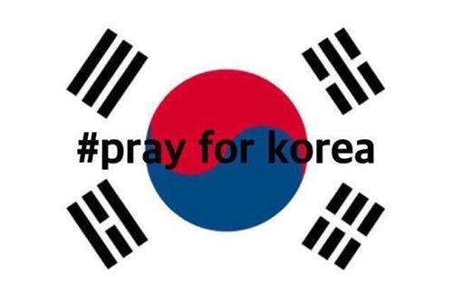 ▲SNS 상에 올라온 #prayforkorea 해시태그 사진.