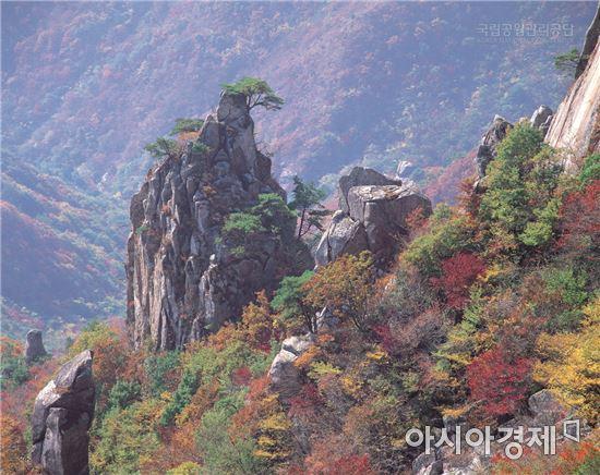 가을. 사진=아시아경제DB
