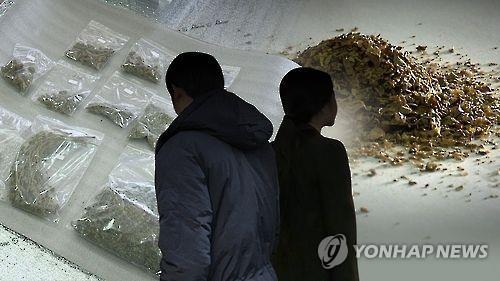 10대 마약사범 급증. 사진=연합뉴스 제공