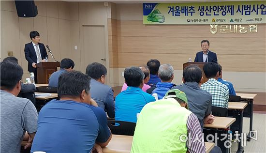 전남농협, 겨울배추 생산안정제 농업인 대상 사업설명회 개최