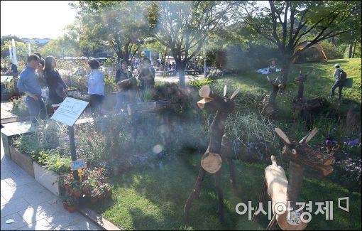 [포토]정원박람회 둘러보는 시민들