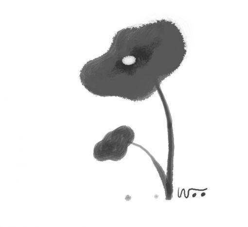 [오후 한詩]토란잎 이슬 한 채/정희성