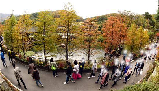 [여행만리]한잎 한잎 가을 花談