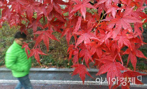 가을. 사진=아시아경제 DB