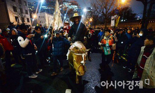 [포토]청와대 행진에 동참한 '소'