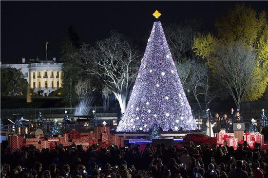 ▲일립스 광장에 밝혀진 크리스마스 트리. (EPA=연합뉴스)