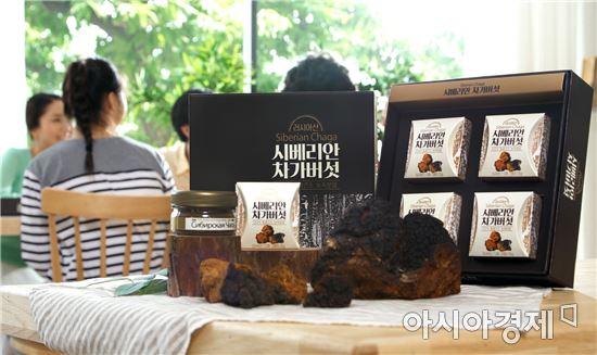 암환자에게 인기! 면역력 높이는 러시아산 차가버섯