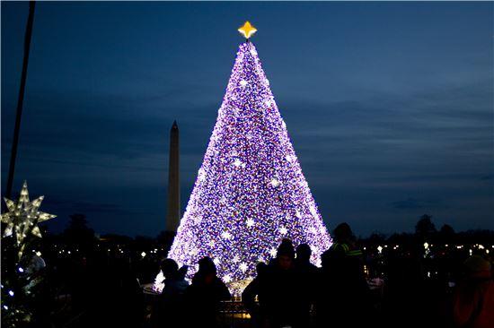 ▲백악관 인근 일립스 공원에 세워진 크리스마스 트리의 모습(AP연합뉴스)