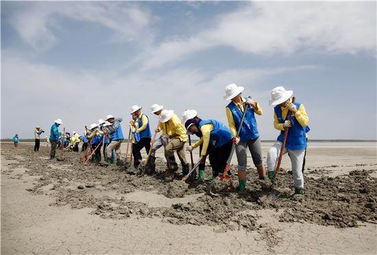 현대차그룹 내몽고사막화방지사업