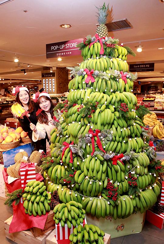 16일 현대백화점 압구정본점 '적도의 크리스마스 상품전' 행사장에 마련된 '아포산 바나나 크리스마스 트리' 에서 직원들이 열대과일을 선보이고 있다.