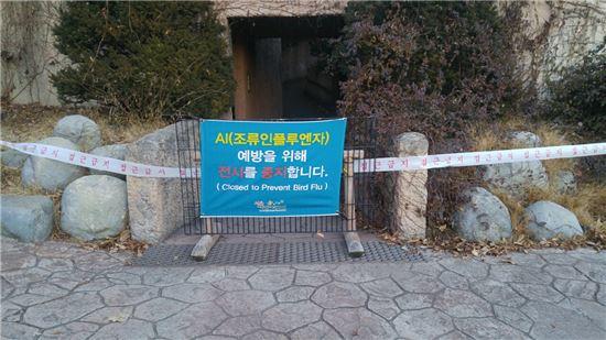 경기도 과천 서울대공원 동물원에 AI 예방을 위한 전시 중지 팻말이 붙어 있다. 서울대공원은 지난 17일 동물원 휴장을 결정했다. (사진=서울시 제공)