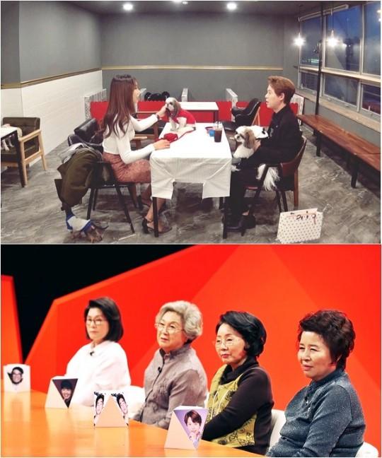 SBS '미운우리새끼'에 출연한 토니안/사진=SBS 제공
