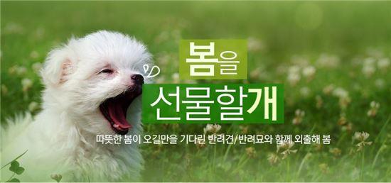 """""""반려동물도 봄 탄다?""""…옥션, 반려동물 용품 최대 69% 할인"""