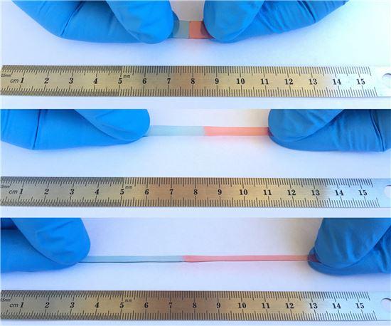 왕 연구팀이 발명한 자가치유 재료는 신축성이 높아 원래 크기의 50배 이상으로 늘어날 수 있다. <사진=왕 연구팀/BI>