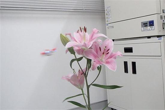 로봇드론벌이 실제 백합의 꽃가루를 다른 개체로 옮기는 과정을 시연하는 모습. 사진 = 미야코 에이지로 박사 연구팀