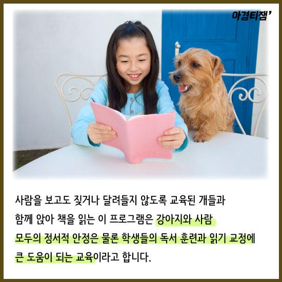 [카드뉴스]강아지한테 책을 읽어주는 아이들, 독서습관이 좋아진다고요?
