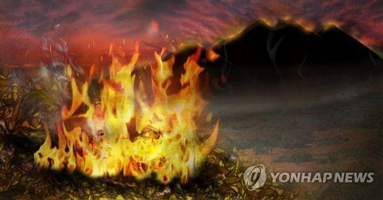 해당 이미지는 기사 중 특정표현과 무관 / 이미지=연합뉴스