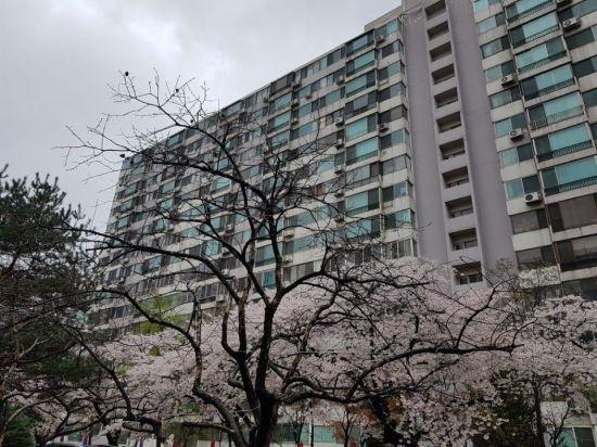서울 송파구의 한 아파트 단지