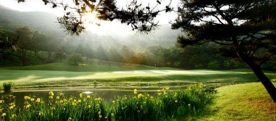 전국 78개 골프장이 여름철에도 휴장 없이 정상 영업을 한다.