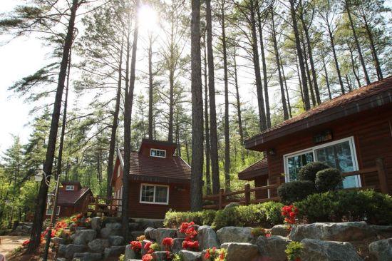 국립백운산자연휴양림 전경. 국립자연휴양림관리소 제공