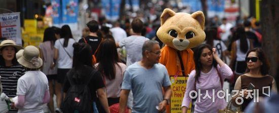 가벼운 옷차림의 관광객들 속 힘겨워 보이는 고양이. /문호남 기자 munonam@