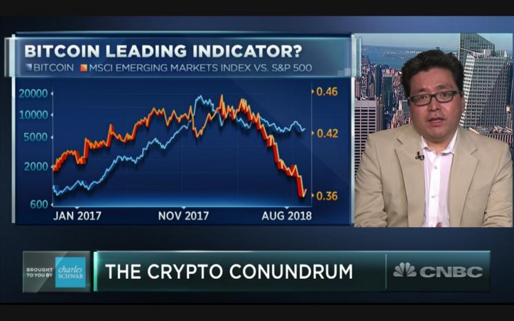 톰 리 미국 펀드스트래트 애널리스트(출처=美 CNBC 캡쳐)