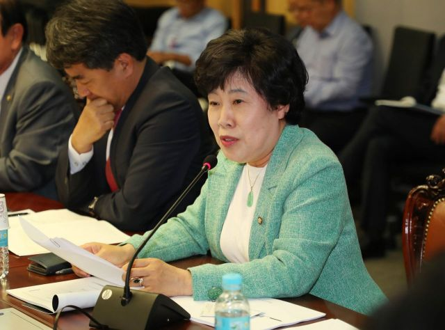 조배숙 민주평화당 의원.(자료사진) [이미지출처=연합뉴스]