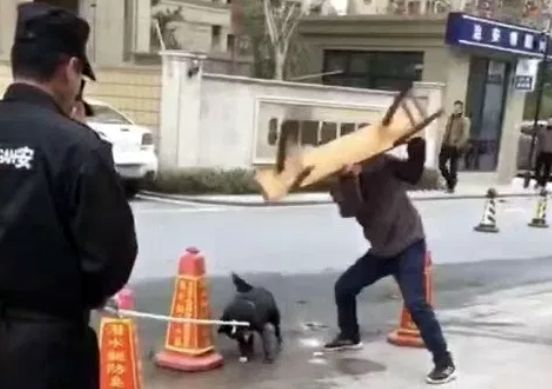 중국 항저우시 공안이 유기견 단속 중 개를 학대하는 장면이 담긴 영상. 사진 = emma7900 twitter