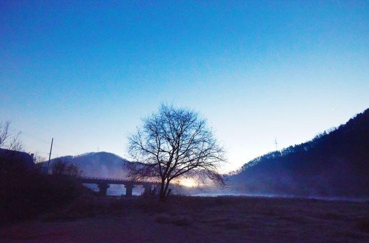 미호천에 피어오르는 새벽 물안개