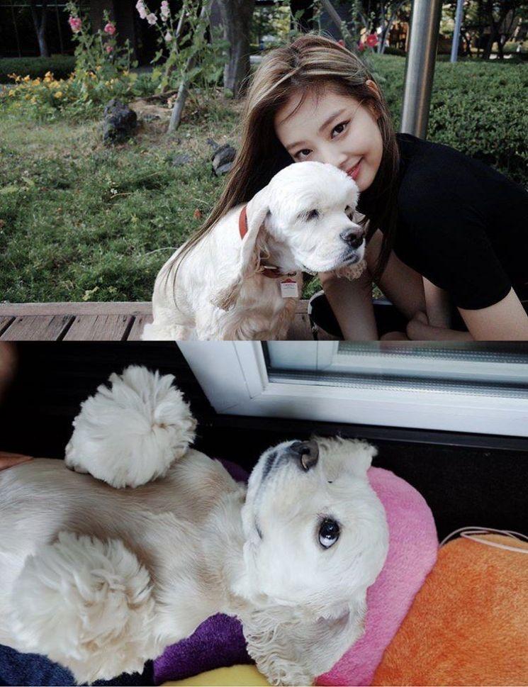 사진=블랙핑크 공식 인스타그램 캡처