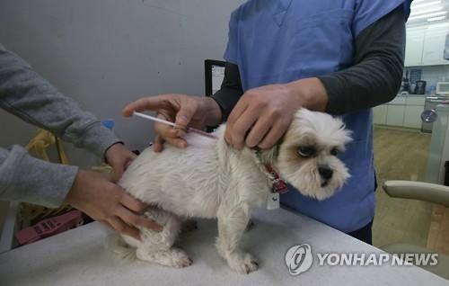 서울시, 취약계층 반려동물 등록·중성화수술 무료로 실시